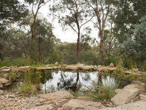 gallery-blackburn-billabong-7