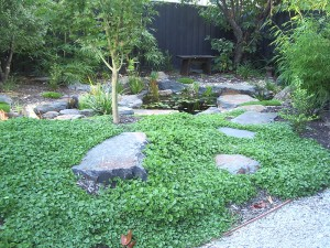 gallery-japanese-pond