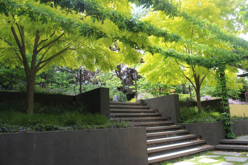 GALLERY: Rotary Garden DesignFest 2016 - A Kilby Perspective