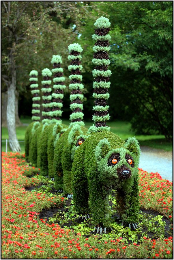 http-::500px.com:photo:44540286:mosaicultures-2013-the-lemur-centipede-by-patrick-pilon
